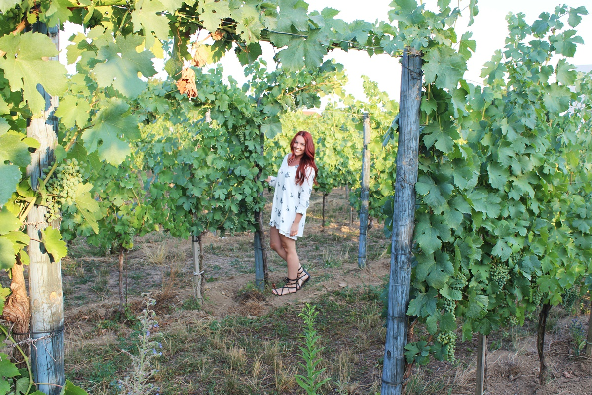 In the Vineyards Langenlois Outfit 12