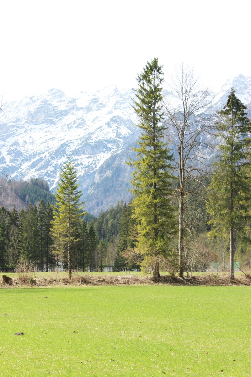 Schiederweiher, Hinterstoder Austria 3
