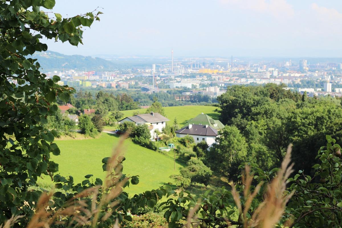 Beerenberg Linz Event 10