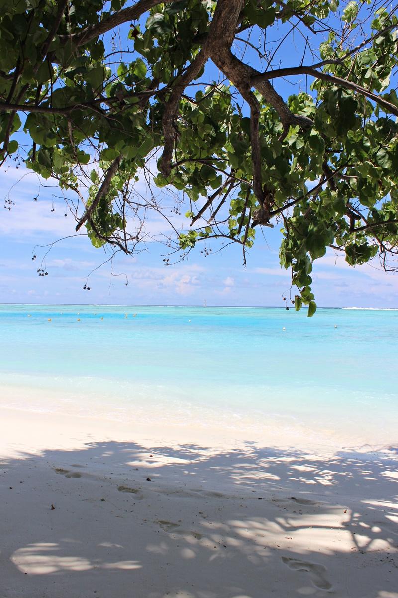 Honeymoon Maldives Meeru Island 3
